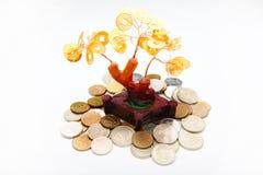 Árbol Feng Shui Symbol Studio Quality del dinero Fotografía de archivo