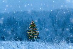 Árbol festivo en un campo nevoso Imagen de archivo