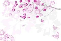 Árbol floral imagen de archivo libre de regalías