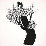 Árbol floreciente de la primavera Gráfico del vector stock de ilustración
