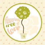 Árbol floreciente del amor en el pote Foto de archivo