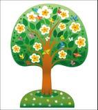 Árbol floreciente del paraíso Imagen de archivo