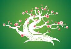 Árbol floreciente del resorte con el tronco curvado Imagen de archivo libre de regalías