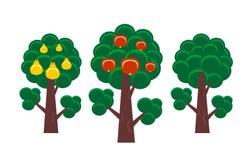 Árbol frutal Foto de archivo libre de regalías