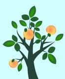 Árbol frutal abstracto ilustración del vector