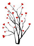 Árbol frutal del corazón Fotos de archivo