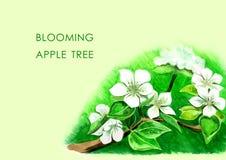 Árbol frutal floreciente stock de ilustración