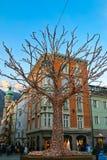 Árbol grande adornado con las luces de hadas en Innsbruck, Austria Imagenes de archivo