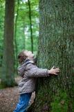 Árbol grande del abarcamiento del niño pequeño en el bosque Fotos de archivo libres de regalías