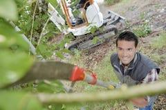 Árbol hacia abajo de la poda del hombre de la visión con la sierra de largo mango Fotos de archivo libres de regalías