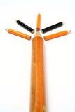 Árbol hecho de lápices de la diversa talla en perspectiva Fotografía de archivo