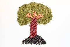 Árbol hecho de nueces Imágenes de archivo libres de regalías