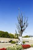 Árbol hecho del bronce con las muestras del epitafio puestas encendido Imagen de archivo libre de regalías