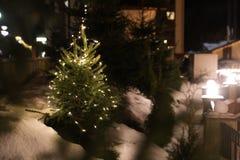 Árbol hermoso de la conífera con las luces de la Navidad que brillan intensamente en la calle, espacio para el texto imagen de archivo