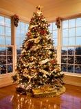 Árbol hermoso de Navidad en la oscuridad Foto de archivo libre de regalías