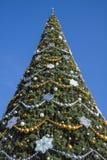 Árbol hermoso del Año Nuevo y cielo azul Fotos de archivo
