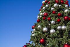 Árbol hermoso del Año Nuevo y cielo azul para el fondo Fotografía de archivo