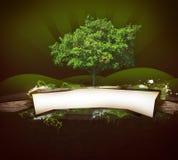 Árbol ideal Fotografía de archivo