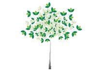 Árbol ilustrado con las hojas verdes Foto de archivo libre de regalías