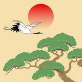 Árbol japonés de la grúa y de pino con el sol naciente Foto de archivo libre de regalías