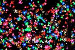 Árbol ligero colorido Fotografía de archivo libre de regalías