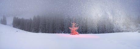 Árbol mágico en la Navidad Fotografía de archivo