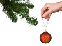 Árbol, mano y bola de Cristmas fotos de archivo libres de regalías