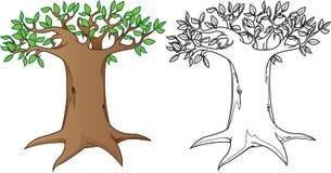 Árbol misterioso gigante, en color y la versión blanca negra ilustración del vector