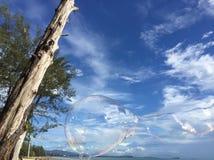 Árbol muerto con las burbujas y el cielo Imagenes de archivo