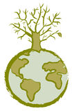 Árbol muerto del globo Imagen de archivo libre de regalías