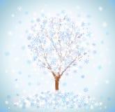 Árbol nevado del invierno Imágenes de archivo libres de regalías