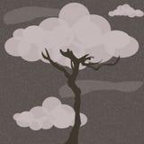 Árbol nublado Foto de archivo libre de regalías