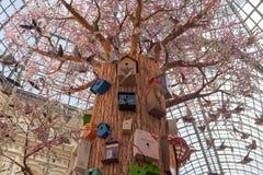 Árbol, pájaros y pajareras artificiales en la tienda de la GOMA Imagen de archivo libre de regalías