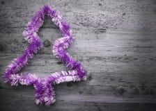 Árbol púrpura, malla, espacio de la copia, Gray Background Imagenes de archivo