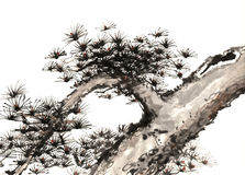 Árbol pintado a mano decorativo magnífico distinguido tradicional chino del tinta-pino fotos de archivo libres de regalías