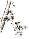 Árbol pintado a mano decorativo magnífico distinguido tradicional chino del tinta-pino imagen de archivo libre de regalías