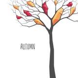 Árbol poligonal del otoño Fotos de archivo libres de regalías