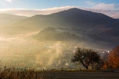 Árbol por el camino del campo en salida del sol de niebla Foto de archivo