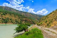 Árbol por el río, paisaje de Uzbekistán Imagenes de archivo