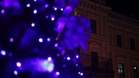 Árbol principal del Año Nuevo que adorna el cuadrado central de la ciudad europea vieja por días de fiesta almacen de video