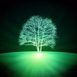 Árbol que brilla intensamente abstracto Fotografía de archivo