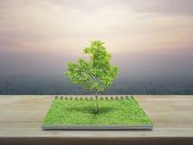 Árbol que crece de un libro abierto, concepto ecológico Foto de archivo libre de regalías