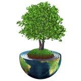 Árbol que crece en el centro de la tierra del planeta Ilustración del Vector