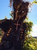 árbol que es Imágenes de archivo libres de regalías