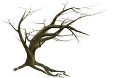 Árbol que se inclina con las ramas desnudas ilustración del vector