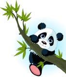 Árbol que sube de la panda gigante stock de ilustración