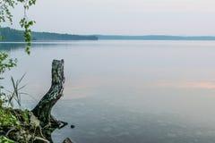 Árbol quebrado en una orilla de un lago en una puesta del sol, Uveldy Foto de archivo