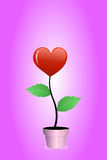 Árbol rojo del corazón Foto de archivo