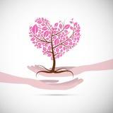 Árbol rosado abstracto en forma de corazón en manos humanas Fotos de archivo