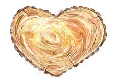 Árbol seccionado transversalmente de un en forma de corazón Imagen de archivo libre de regalías